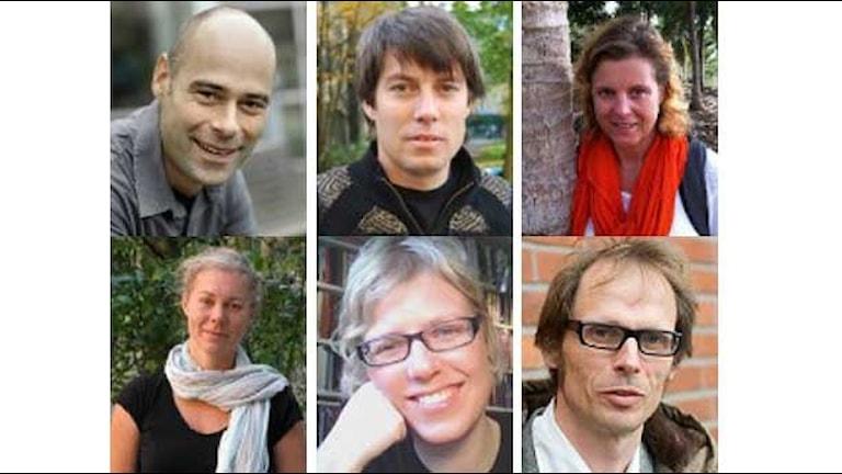 Stefan Gössling, Johannes Stripple, Madelene Ostwald, Matilda Palm, Eva Lövbrand, Filip Johnsson.