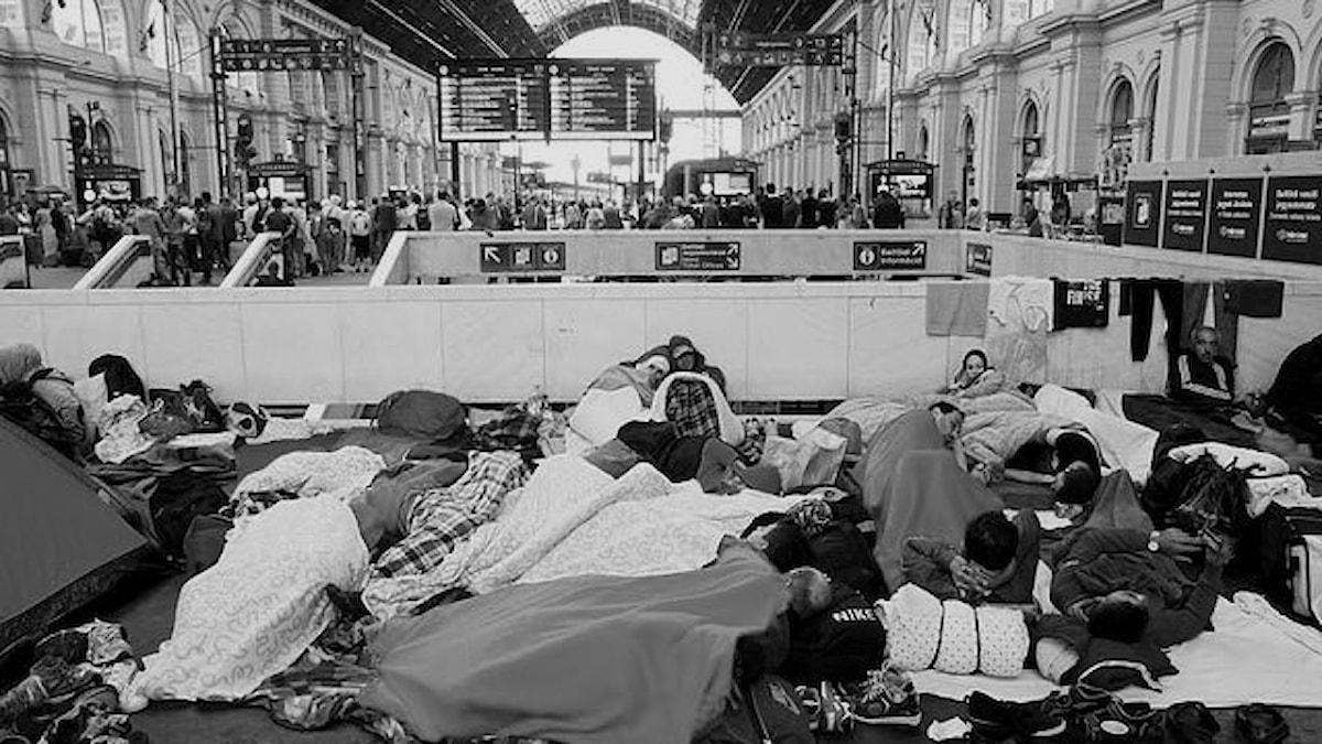 Flyktingar
