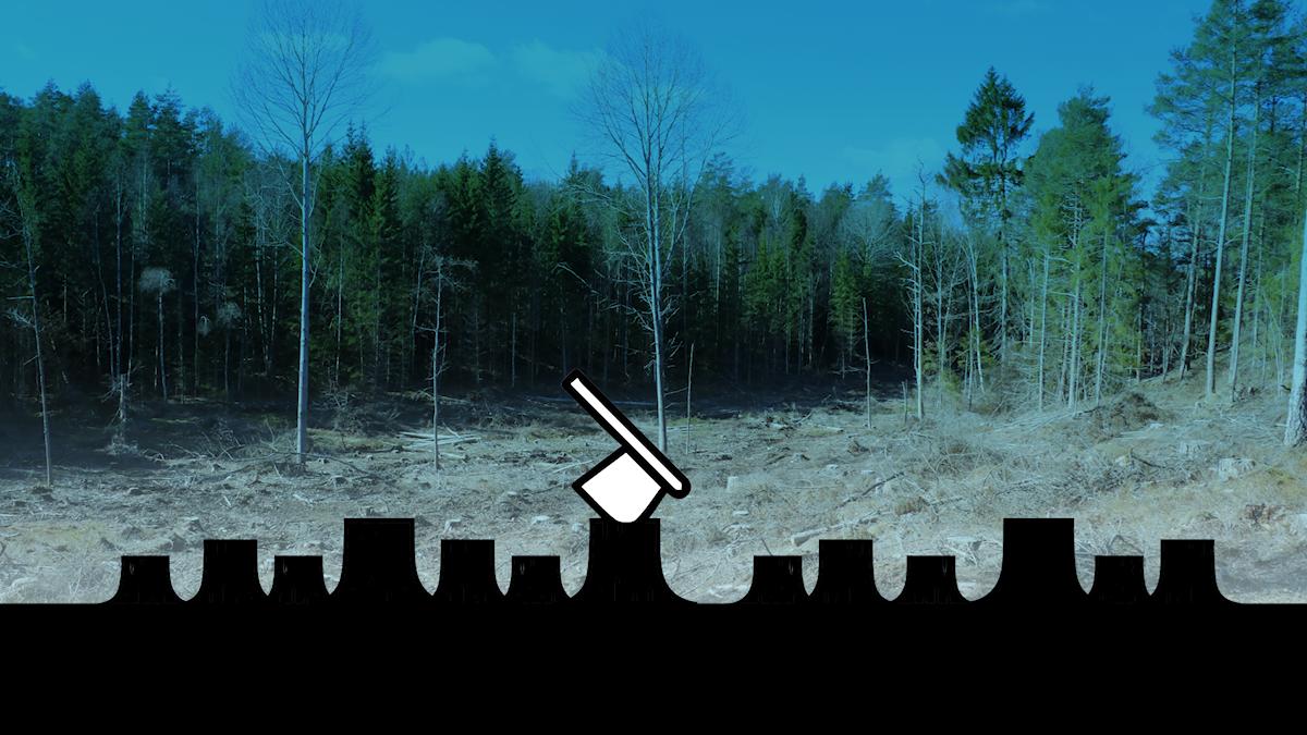 En grafisk yxa på nedhuggna träd framför fotot av en skog.