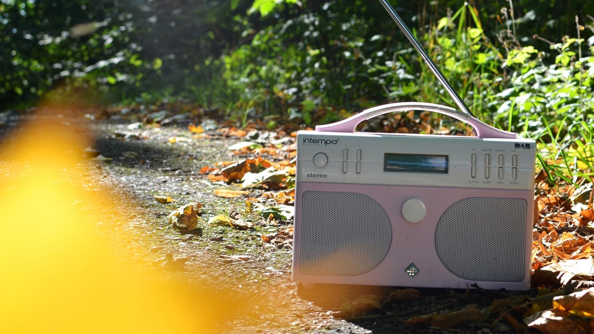 Kannettava vaaleanpunainen radio ulkona