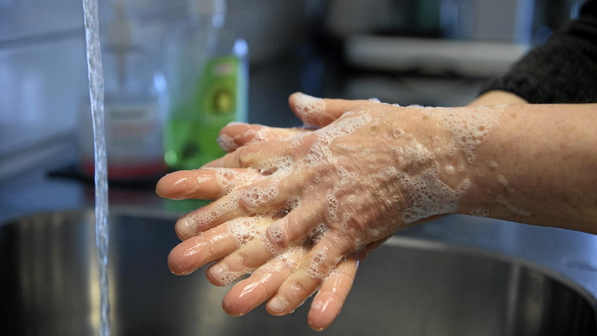 Käsienpesua kraanan alla.