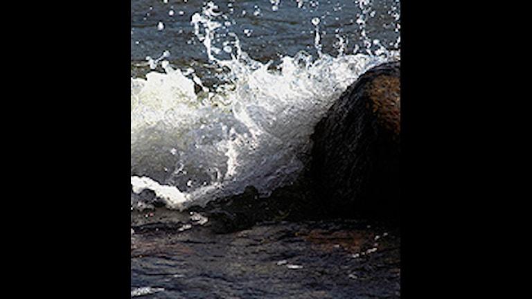 Vågor som bryter mot strandstenarna. Foto. Hasse Holmberg / SCANPIX