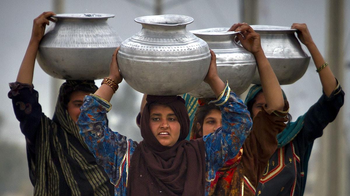 Kvinnor i Pakistan bär dricksvatten. Foto:  TT/AP Photo/Anjum Naveed.