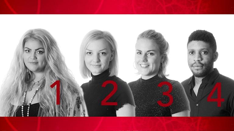 Finalisterna P4 Örebros lokalartist 2016
