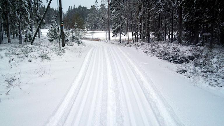 Skidspår i Ånnaboda.