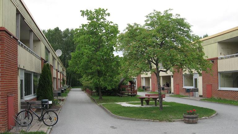 Brickebacken. Foto: Marie Hansson/Sveriges Radio Örebro