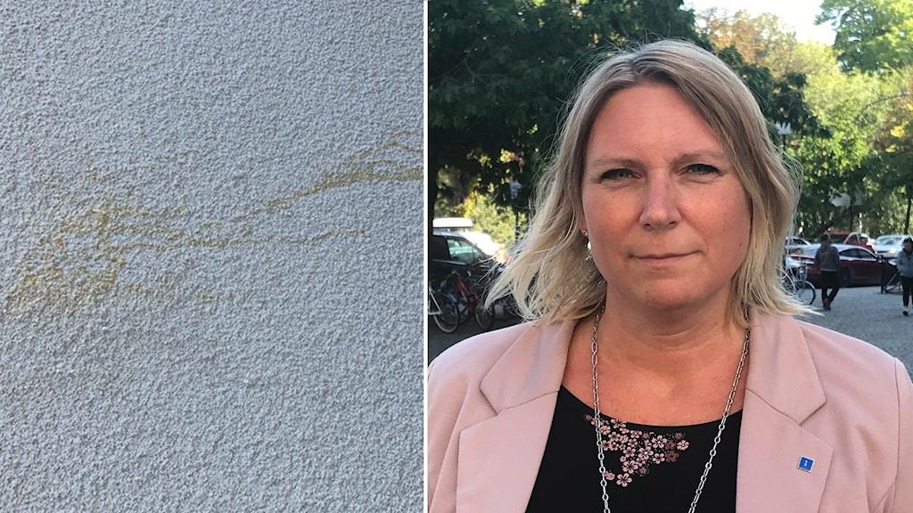 Bild av fasaden där någon kastat ägg och till vänster är Marlene Jörhag.