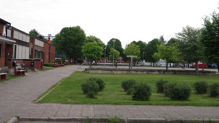 Alléskolan i Hallsberg vill gärna fånga upp John Bauers elever. Foto Marie Hansson P4 Örebro.