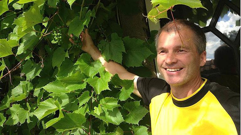Marco Åkesson, trädgårdsmästare. Foto: Madde Klippel/Sveriges Radio
