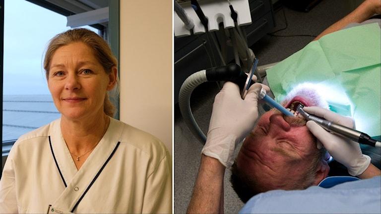 Maria Holmgren är tandläkare vid Folktandvården Eyra.