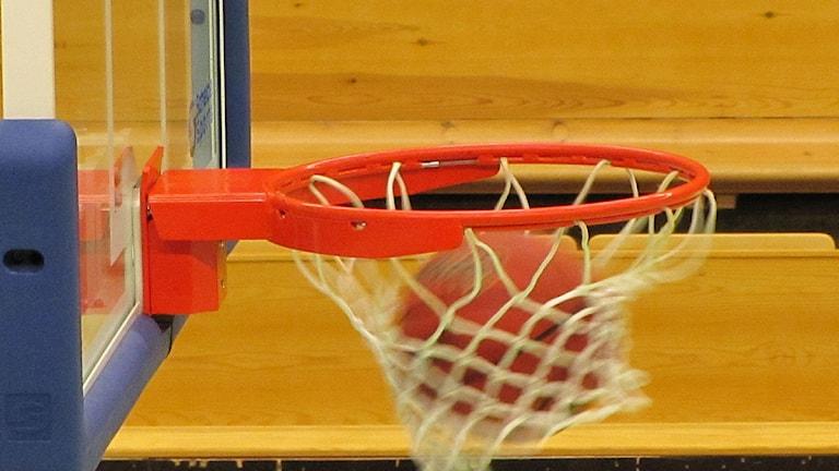 Basketbollkorg i Idrotthuset i Örebro. Foto: Bo Magnusson/Sveriges Radio