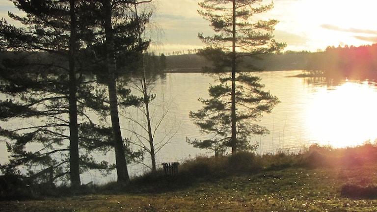 Sjön Råsvalen i morgonsolen.
