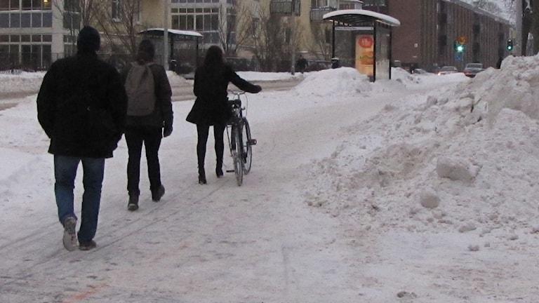 Cykelbana i Örebro. Foto: Gabriel Stenström/Sveriges Radio Örebro