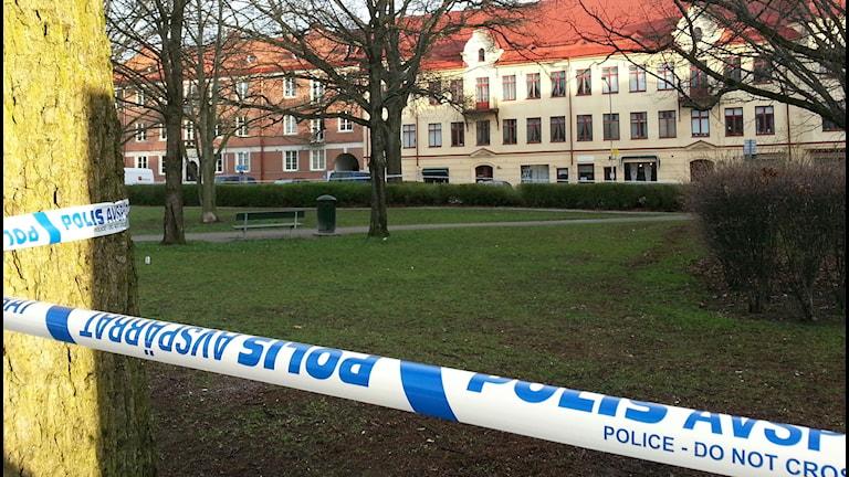 En kvinna har anmält en våldtäkt i Karl Johans park i Örebro. Foto: Maria Elisson/SR Örebro
