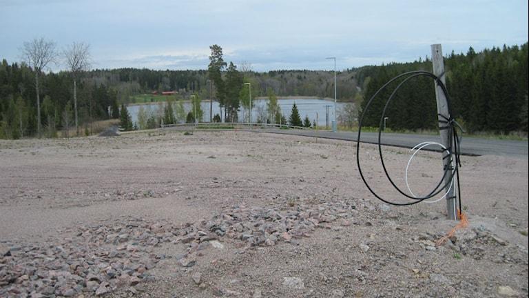 Utsikt från en tomt på Edö. Foto: Anna Björndahl/Sveriges Radio.