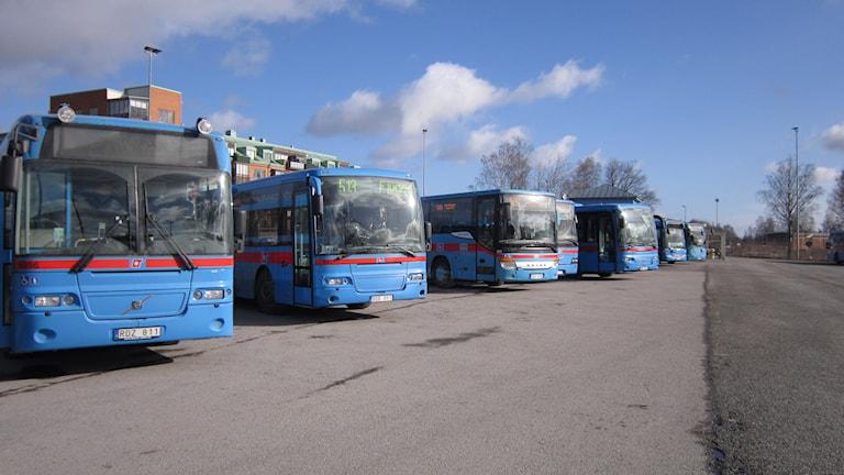 Länstrafikens bussar. Foto: Marie Hansson/P4 Örebro.