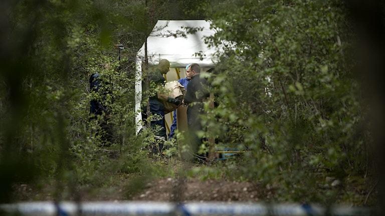 Polisens tekniker på en av brottsplatserna i somras. Arkivfoto: Pavel Koubek/TT.