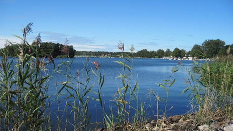 Vättern är en av sjöarna som skulle få utökat standskydd. Foto: Marie Hansson/Sveriges Radio.