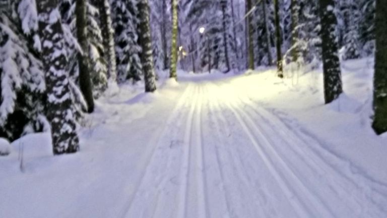Skidspår i Lillån.