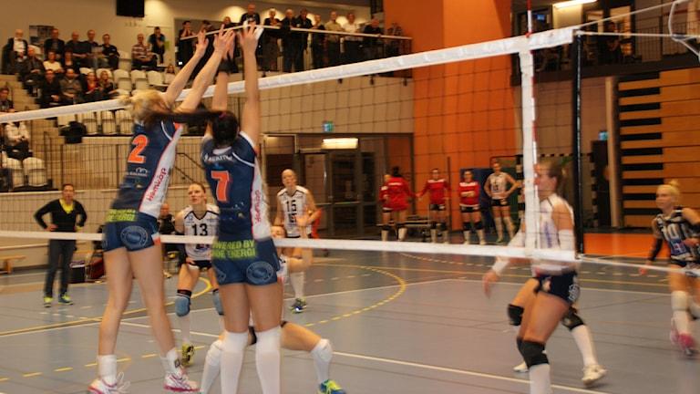 Lindesberg Volley. Arkivfoto: Lasse Hellstrandh, SR Örebro