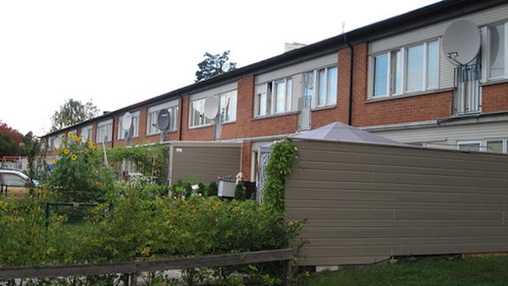 Nya bostäder ska byggas intill den klassiska Vivallabebyggelsen. Foto: Jaber Fawaz/Sveriges Radio.