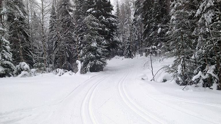 skidspår, vinter, Kilsbergen