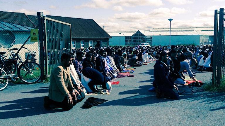 Bön, moské, eid, fitr, ramadan, Vivalla, Örebro