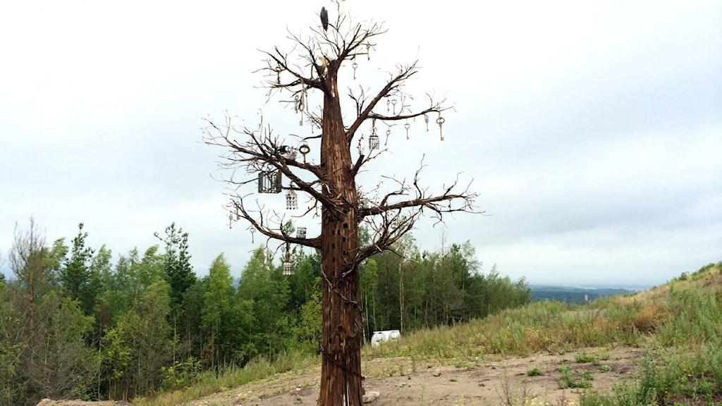 """Konst på hög i Kumla har två nya skulpturer i år. En av dem är """"Yggdrasil""""."""