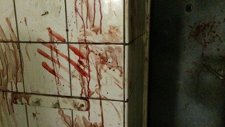 Blodiga handavtryck på väggen.