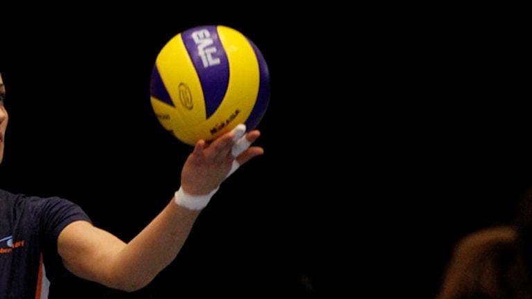 Serveboll, volleyboll, boll