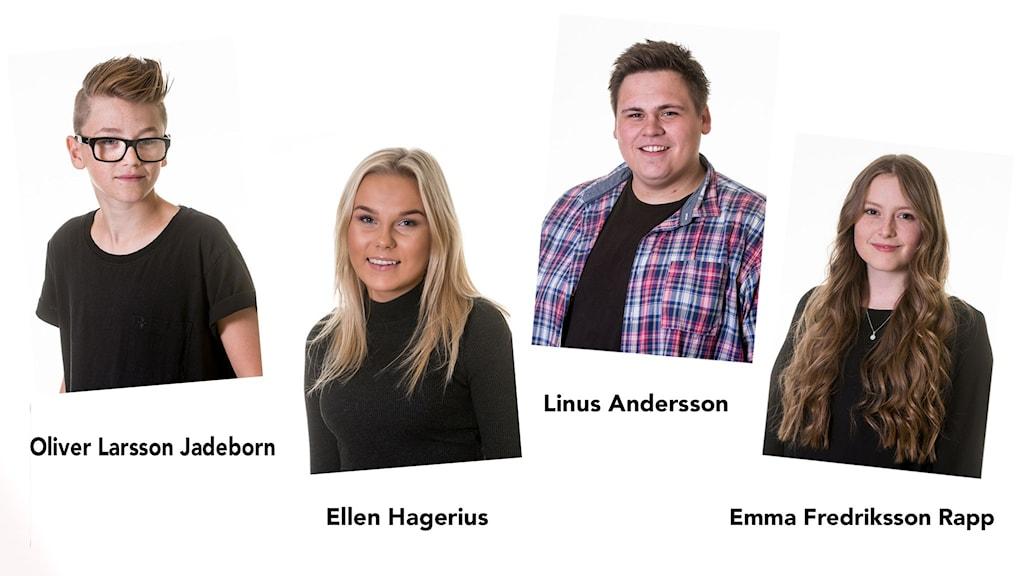 Finalisterna i Årets lokalartist 2015. (Bildcollage)