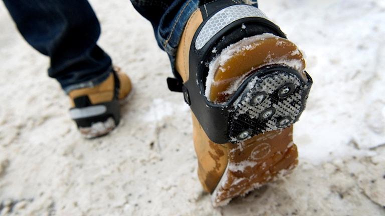 broddar vinter snö