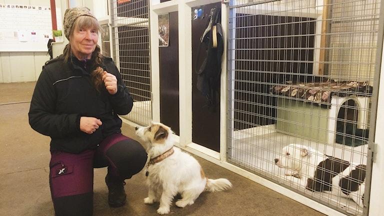 Eva Snell med hundarna Theo och Ezze. Foto: Hanna Roth/Sveriges Radio.