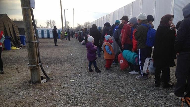 Flüchtlingslager in Kroatien Foto: Privat.