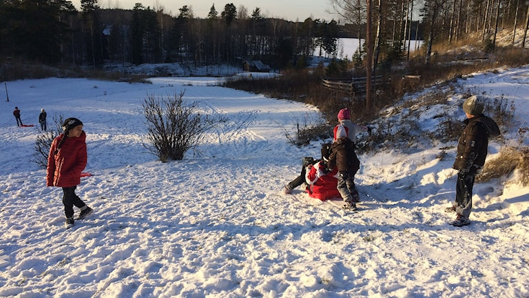 Det var pulkaåkning för första gången för flera av barnen på flyktingboendet i Bredsjö.