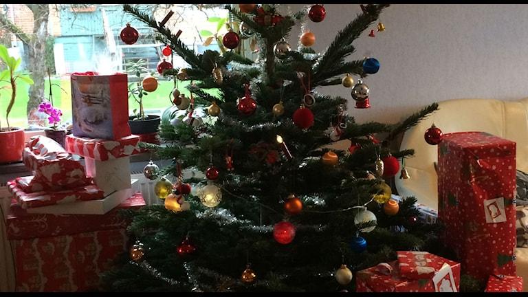 Julgranen var så fin vid jul. Men nu kanske det känns som om den gjort sitt. Foto: Anna Björndahl/Sveriges Radio.