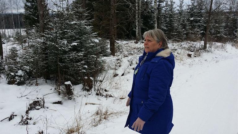 Laila Hammarbäck Björkborn Karlskoga dovhjortar