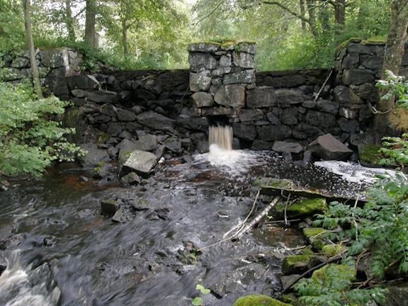 En damm i Sågkvarnsbäcken innan Länsstyrelsen genomfört åtgärder.