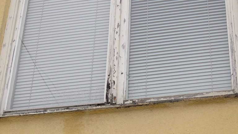 fönster asylboende BMB bristande underhåll