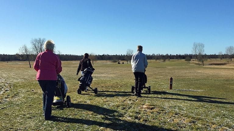Golf golfbana golfare