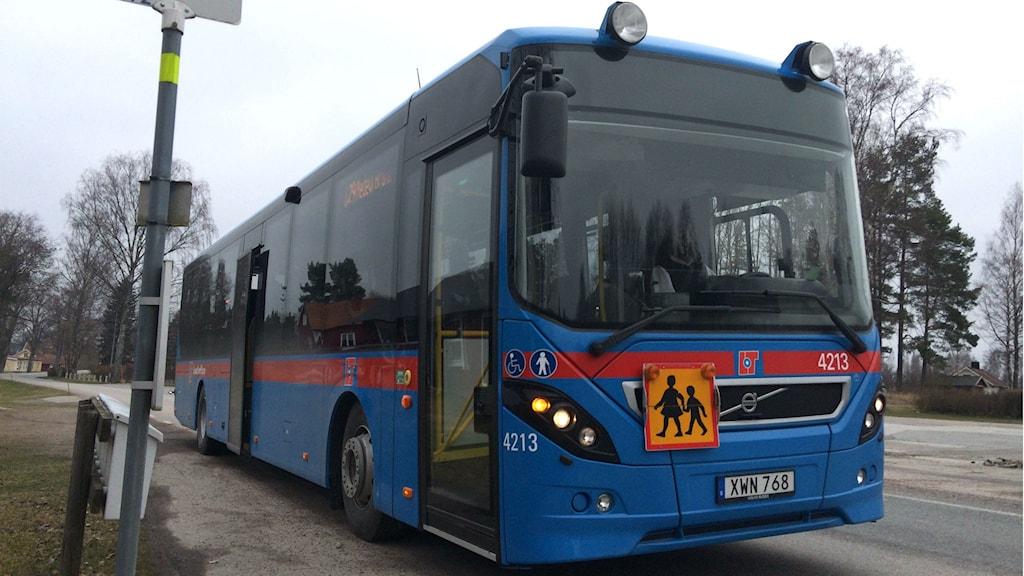 Buss 629