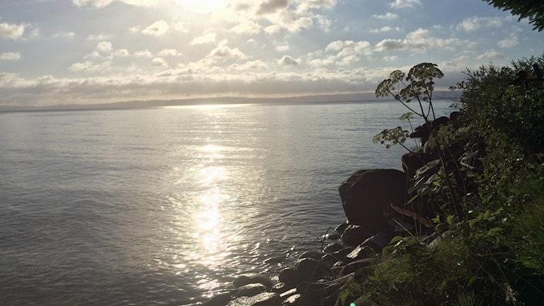 Vätterns strand norr sjö
