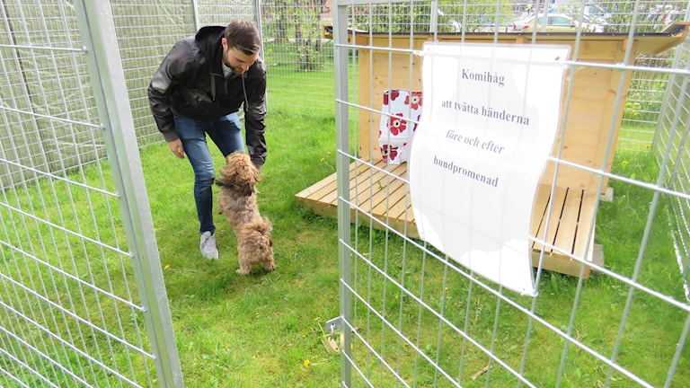 Hundförarskola socialpsykiatrin Kumla Zackarias Edwall och hunden Lizzie