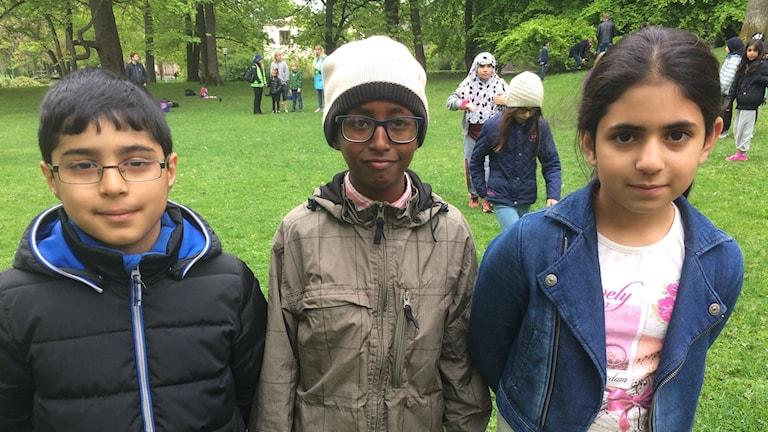 Hekar Magdid, Abdirahman Shuaib och Dania Ahmed går i trean på Al-Salamskolan i Örebro.