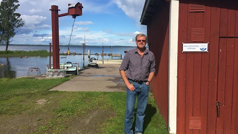 Hans Johansson, tredje generationens yrkesfiskare på Göksholmen. Hans Johansson står nere vid sina fiskebåtar bredvid en skylt där det står MSC-certifierat gösfiske.