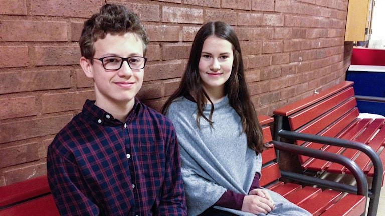 Sebastian Almnor och Alva Stoetzer, klass 8c på Stadsskogsskolan i Lindesberg.