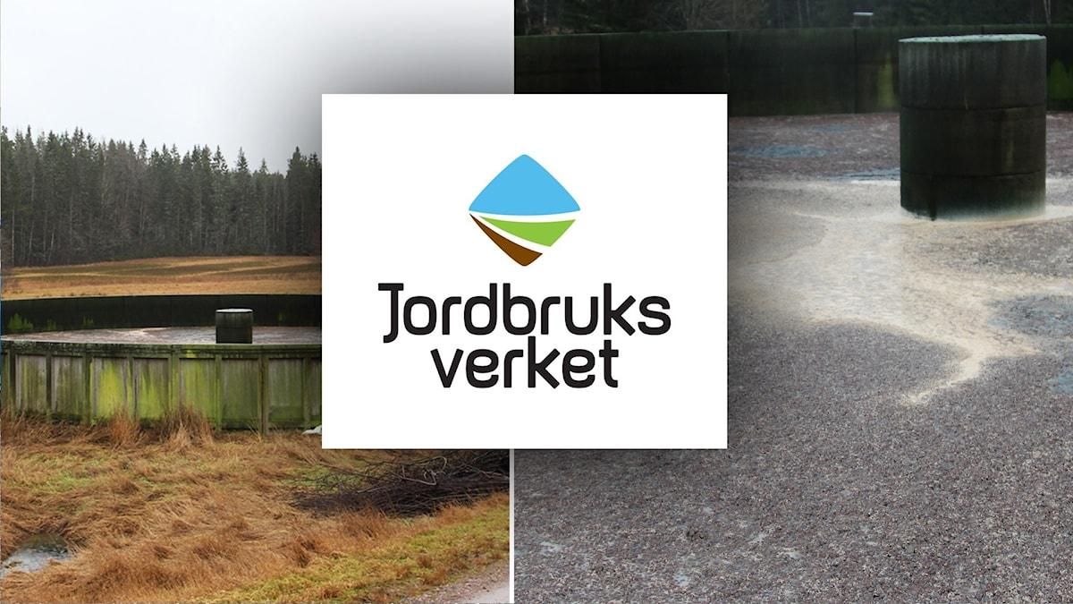 Bild på jordbruksverketslogga, och bild på gödselbrunn utanför Molkom.
