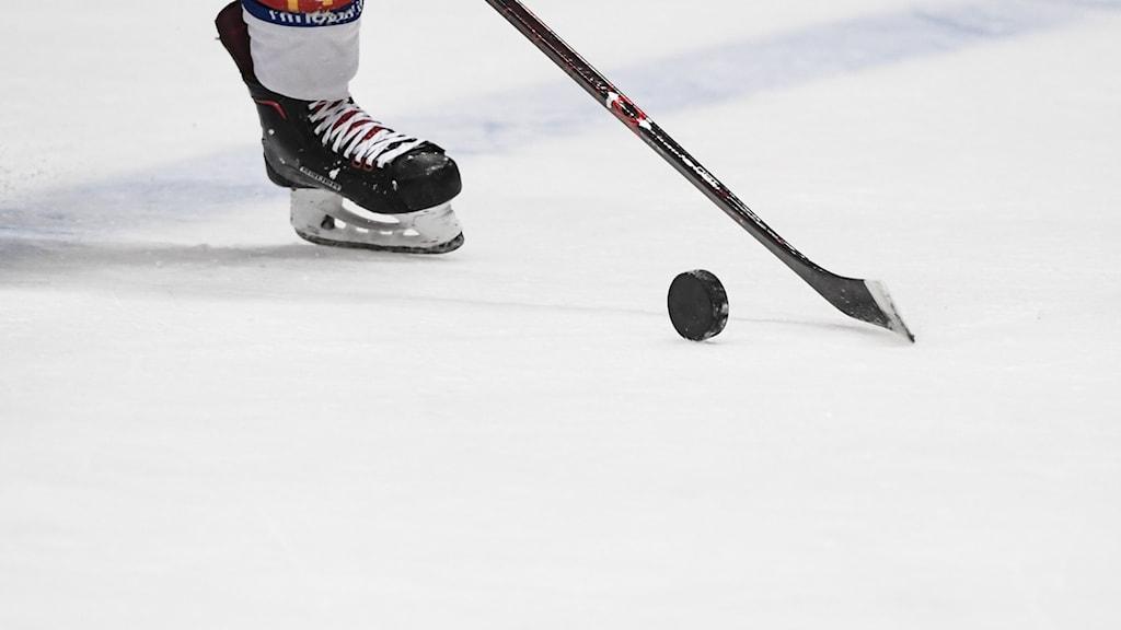 En fot i skridsko på is och en klubba med puck. Foto: Pontus Lundahl/TT