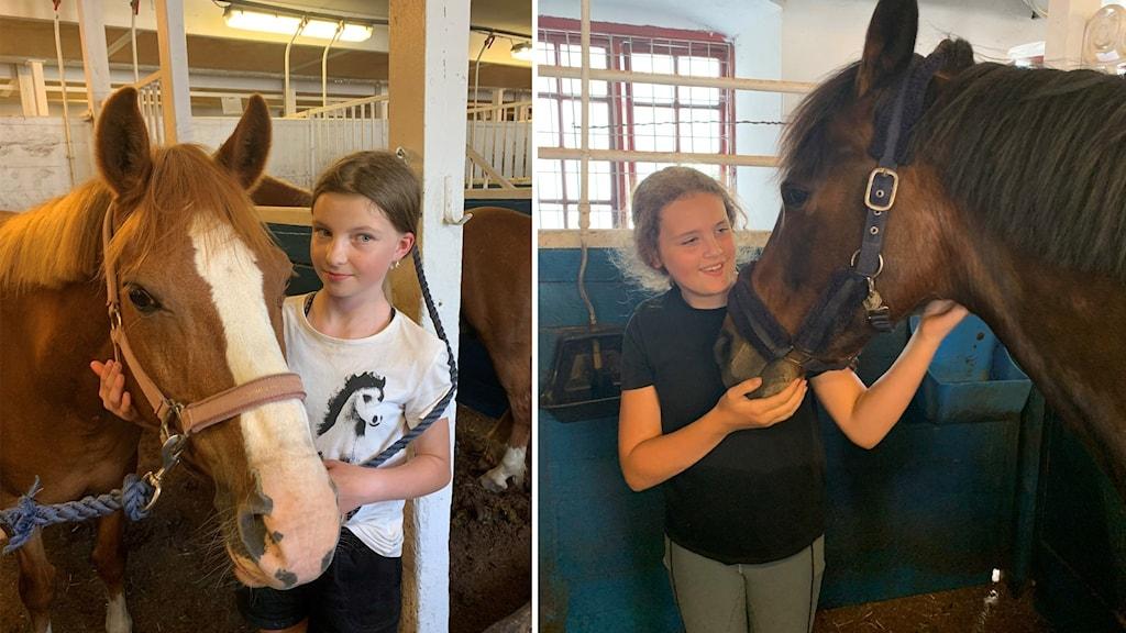 Maja Eklund och Julia Werner står bredvid två hästar i Örebro fältrittklubb i Karlslund.