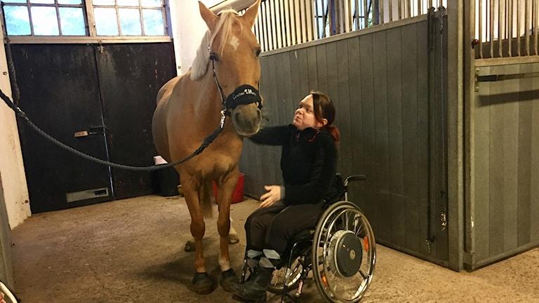 Sofia Domander med hästen Golden Catch Me.